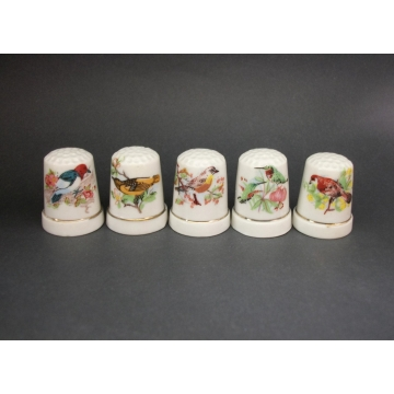 Set of Five 5 Vintage Bone China Bird Thimbles White with Nature Floral Flowers and Birds Images Pictures  Colorful Collectible Thimbles